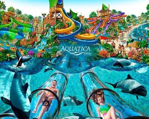 Seaworld tickets coupons orlando