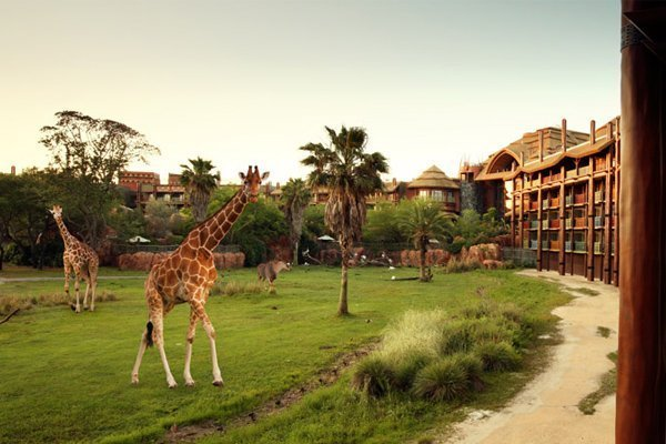 Animal Kingdom Villa Rental