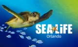 Sea Life Promotion Code – 20% Off Admission
