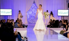 General Admission for One, Two, or Four to the Florida Wedding Expo in Orlando on January 20 (Up to 63% Off)