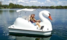 One or Two 30-Minute Lake Eola Swan Boat Rentals (Up to 37% Off)