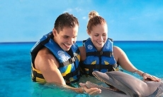 Swim with Dolphins in Mexico, Caribbean and Jamaica at Dolphin Discovery (Up to 32% Off). 15 Locations Available